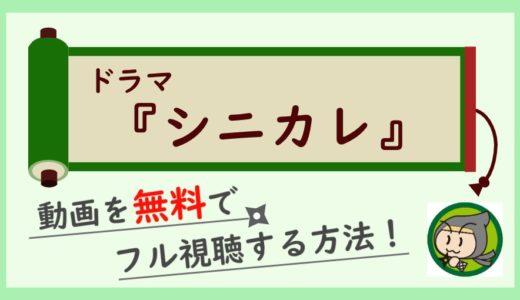 ドラマ「シニカレ」の動画を無料で最終回まで全話フル視聴する方法!
